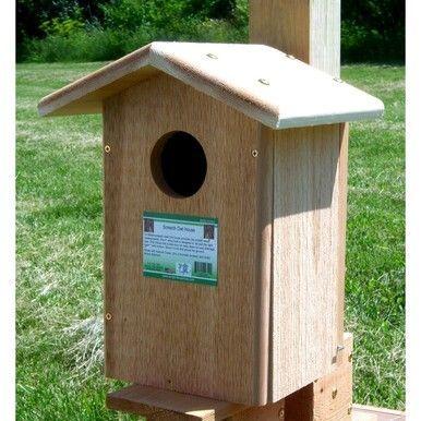 Songbird Essentials Screech Owl Bird House