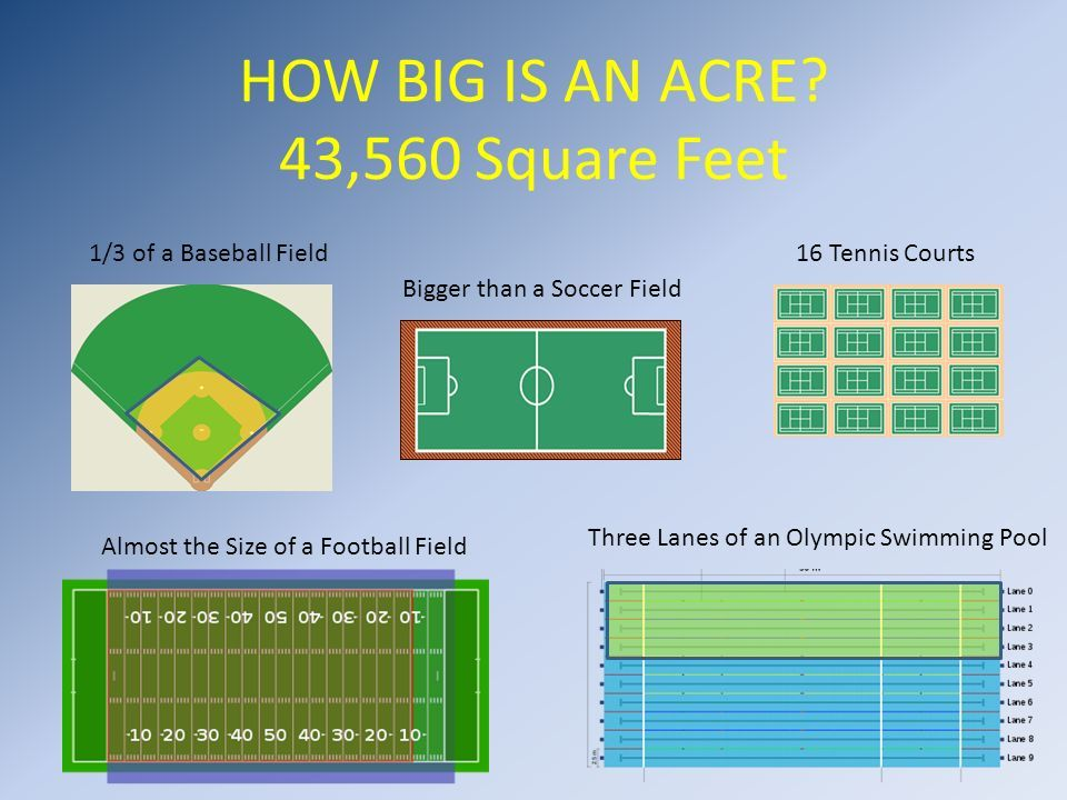 An Acre 43 560 Square Feet Acre Olympic Swimming Football Squares