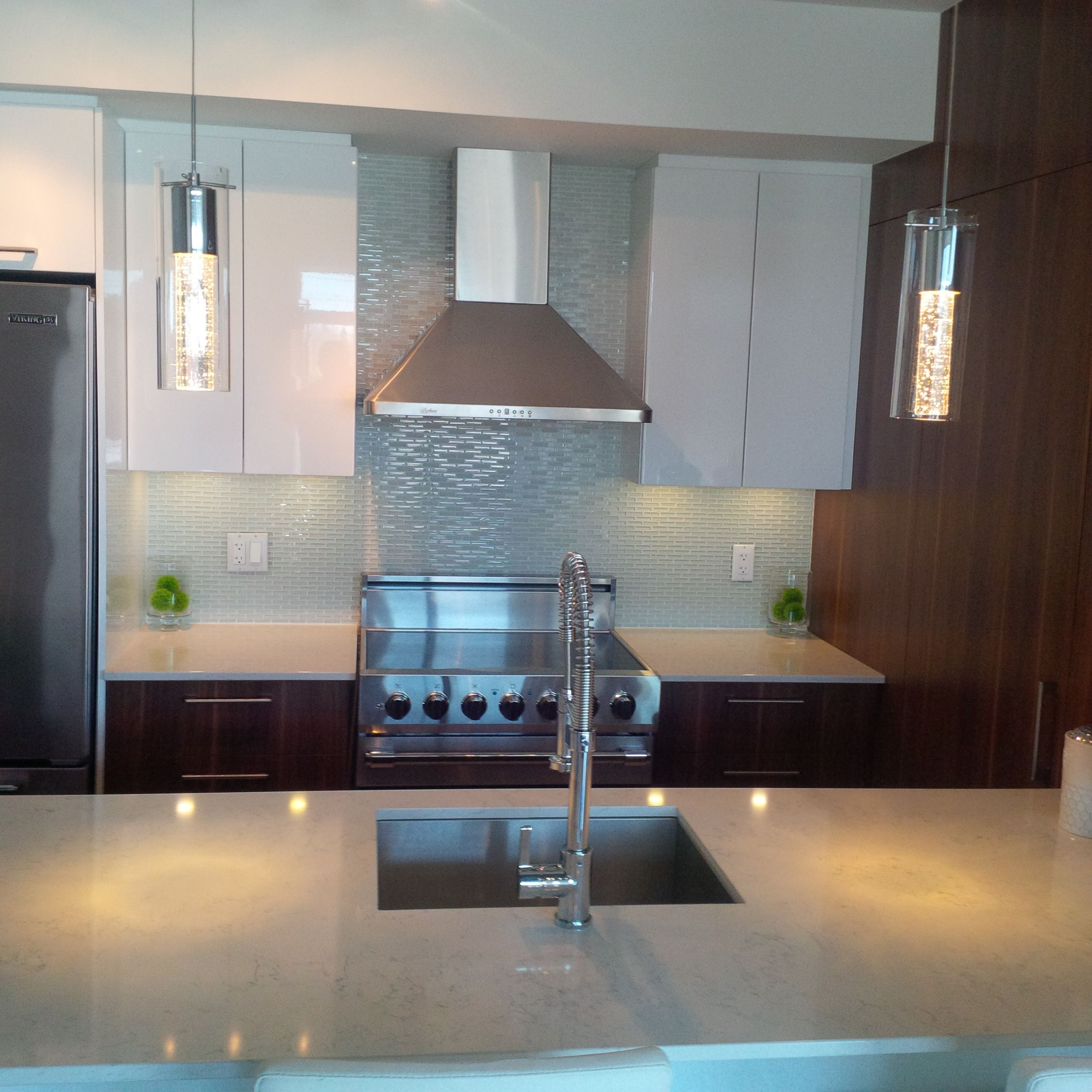 Modern white and dark wood grain kitchen with stainless