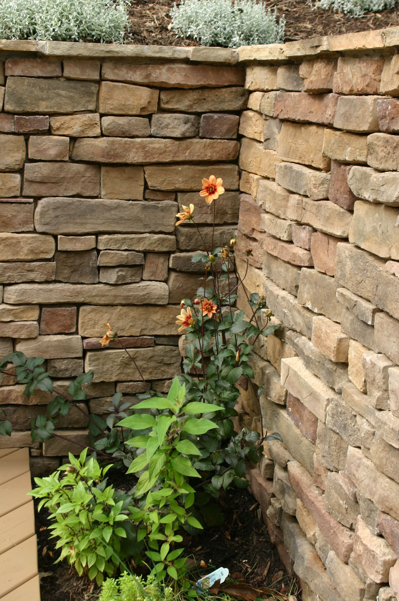 403 Forbidden Landscaping Inspiration Landscaping With Rocks Stone Veneer Wall