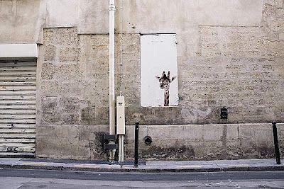Pariisin kirahvit.