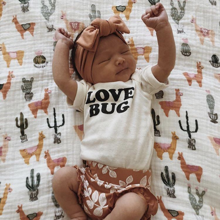 Love Bug Organic Bodysuit Trendy Baby Clothes Organic