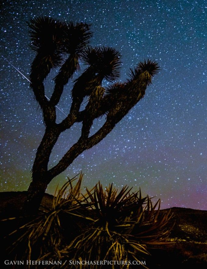 """Photo: Gavin Heffernan. Aa recent meteor shower revealed itself best in the California desert, where the Milky Way is clearly visible in the night sky. Gavin says, """"I managed to get out to Joshua Tree to pursue some Camelopardalids meteors. Didn't see a million of them, but captured a few nice strikes with Milky Way in the background.Taken  on Saturday May 24th, 2014."""""""