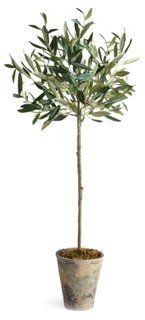 """30"""" Olive Tree In Planter, Faux Napa Home"""