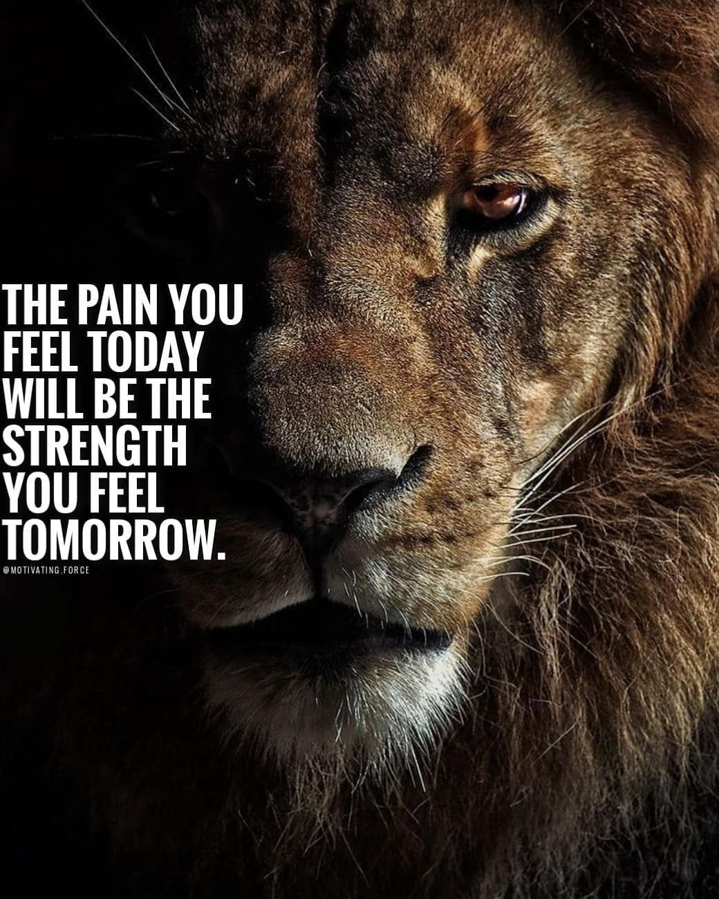 Life Is Full Of Ups And Downs Fight Through Those Tough Times And Give It Your A Inspirational Quotes Motivation I Love You Quotes For Him Motivatinal Quotes