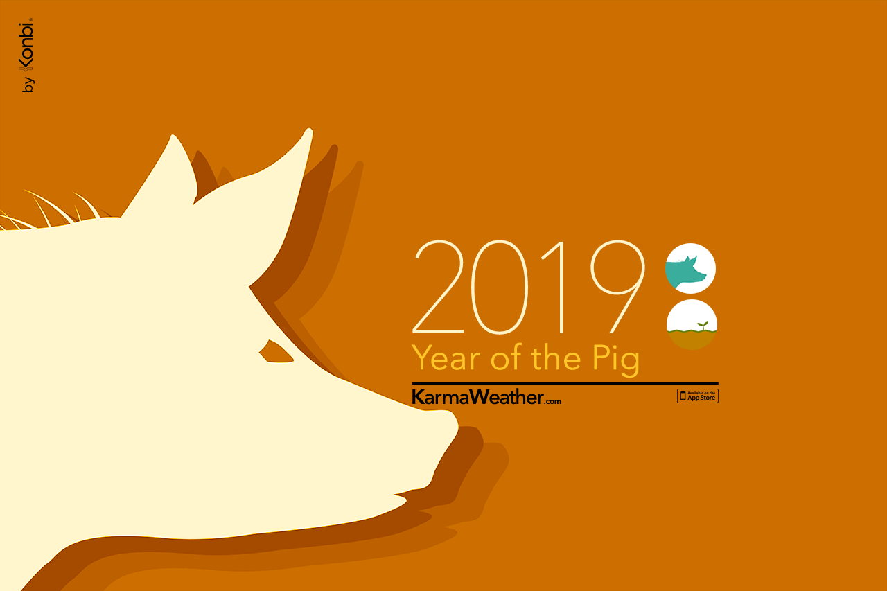 Pig 2019 Chinese Horoscope Pig 2019 Predictions With Images