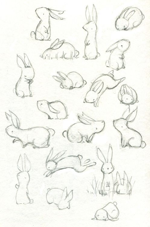 Character Design References Tumblr : Cute rabbits http eloisedraws tumblr post