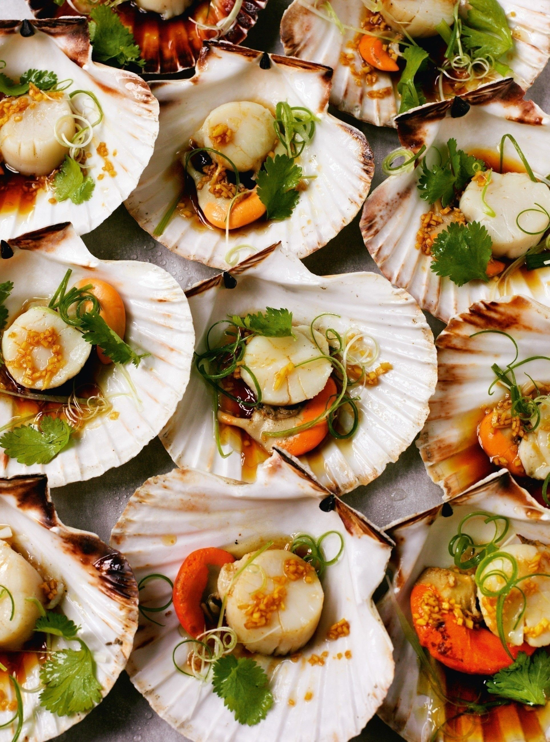 Rick Stein S Fish Shellfish Free Tutorial With Pictures On How To Cook A Scallop In Under 35 Minutes By Cooking W Spring Onion Recipes Cooking Seafood Food