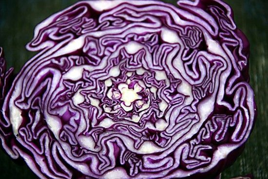 Cancer Society: Eat More Cabbage - Here's Why Cabbage is often associated with corned beef or as the main ingredient in sauerkraut. Originally from China, it was brought back to Europe by the Celtics and soon became a staple in northern Europe...Cabbage is often associated with corned beef or as the main ingredient in sauerkraut. Origina...