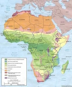 africa map of vegetation