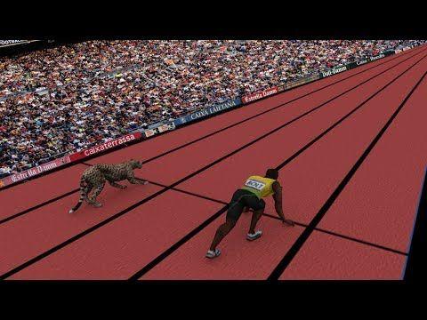 Speed Comparison: Average Person VS Usain Bolt & Cheetah ...