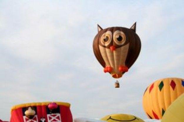 balão de ar coruja