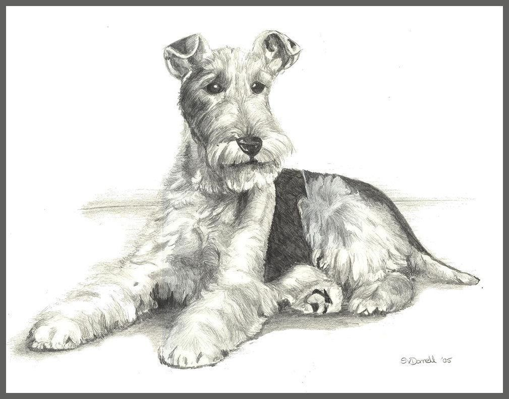 wire fox terriers famous - Google Search | Fox Terrier the Best ...