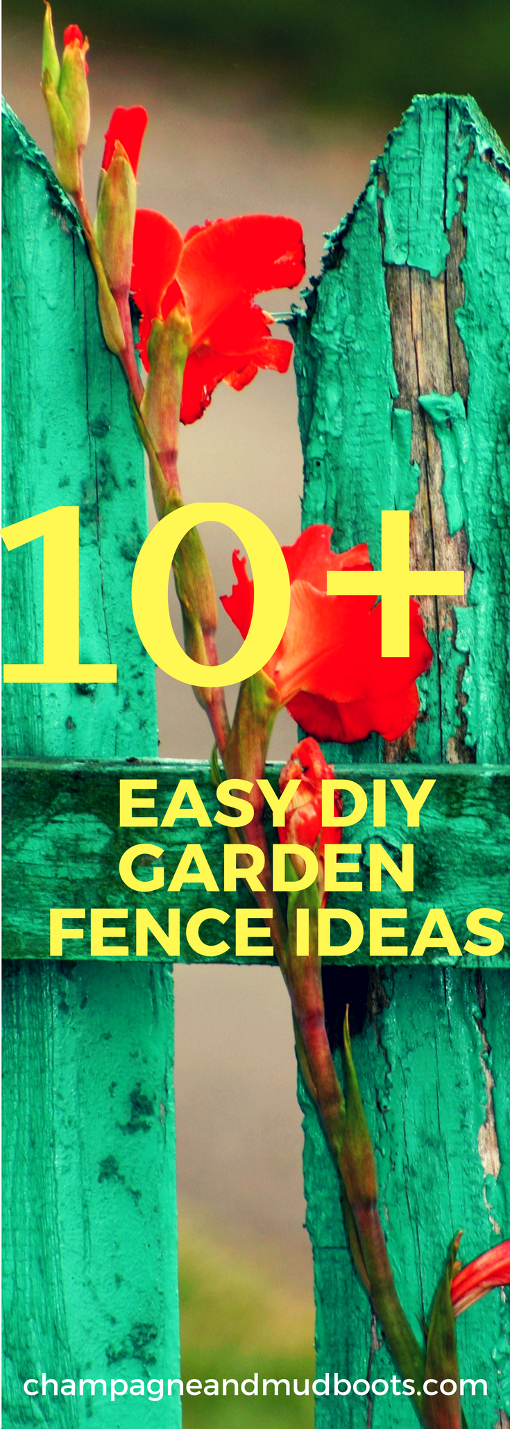 DIY Garden Fence Ideas - Protect Your Harvest -   22 urban garden fence