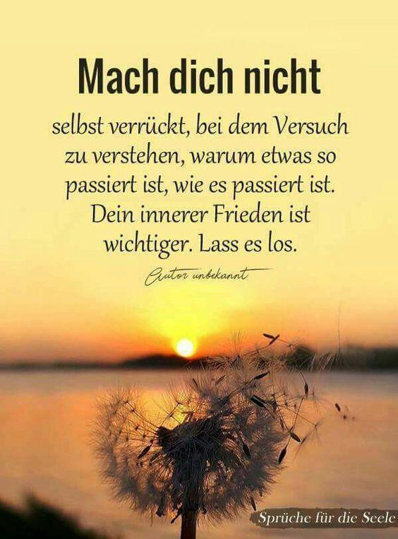 Kurz mal nicht nachgedacht - gluecklich Erschaffe ... - #Erschaffe #Glücklich #kurz #kurze #mal #nachgedacht #nicht