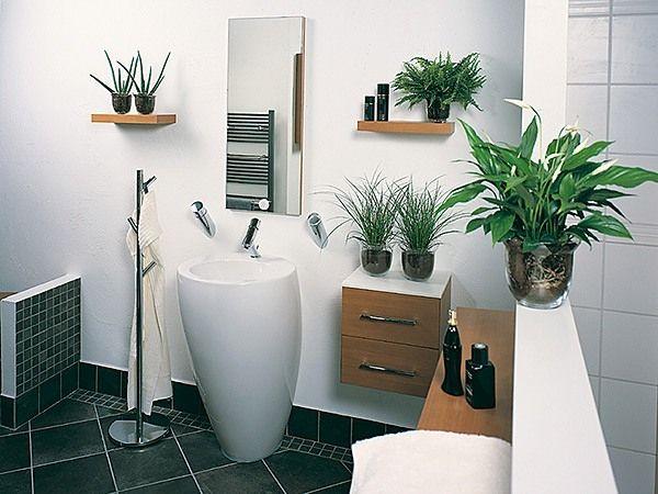 Badezimmer Pflanzen Ikea