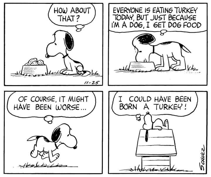 A thankful Snoopy. | Snoopy funny, Snoopy quotes, Snoopy comics