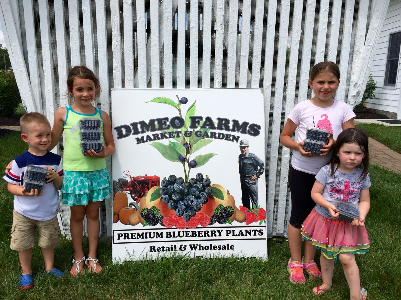 South Jersey At Dimeo Farms
