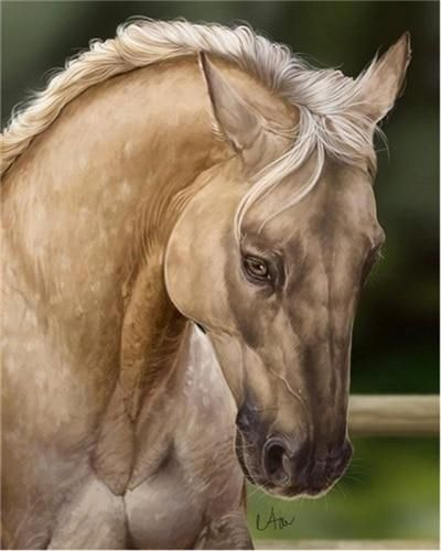Photo of Horse DIY Paint By Number Kit Collection E – SZGD3623 / 40x50cm No Frame