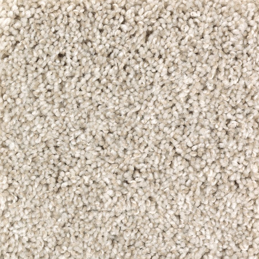 Stainmaster Franklin Place 12 Ft Textured Sand Swept Interior