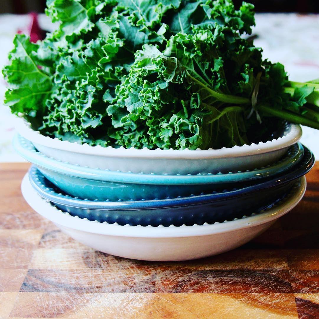 ちゃんと知ってるケールのこと緑黄色野菜の王様ケールを賢く使いこなしましょう