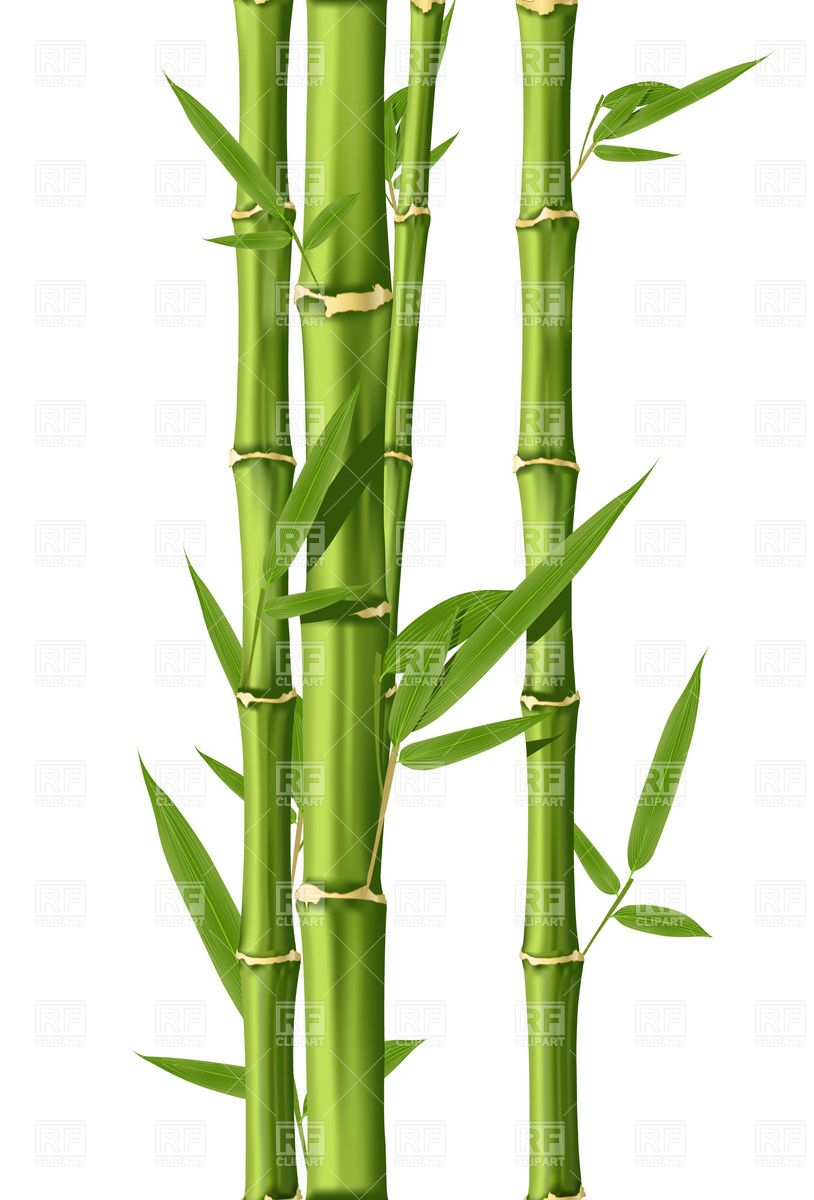 Bamboo Art Design : Bamboo clip art bolton street pinterest artist