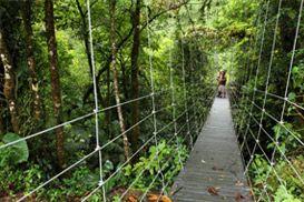***COSTA RICA GREEN PARADISE PACKAGE 7N/8D - Ecoterra Costa Rica