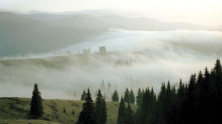 Karpaten Leben In Draculas Waldern With Images Natural Landmarks Nature Landmarks