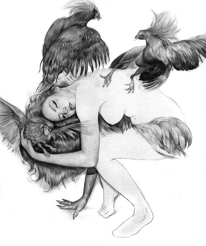 by Amliv Sotomayor
