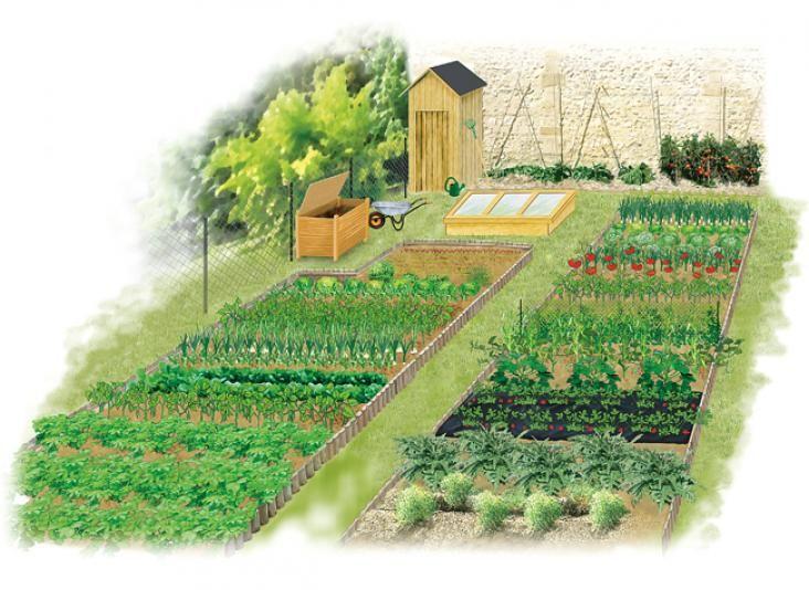 Organiser Le Potager En Debut D Annee Jardin Potager Jardins