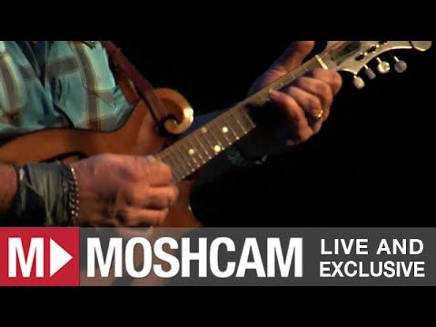 Steve Earle The Galway Girl Live In Sydney Moshcam Music