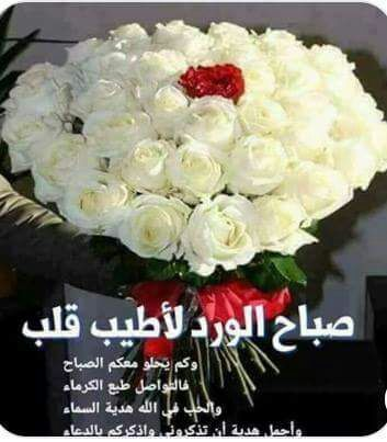 Pin By White Snow On Your Morning Is Happy Good Morning Arabic Morning Greeting Rose