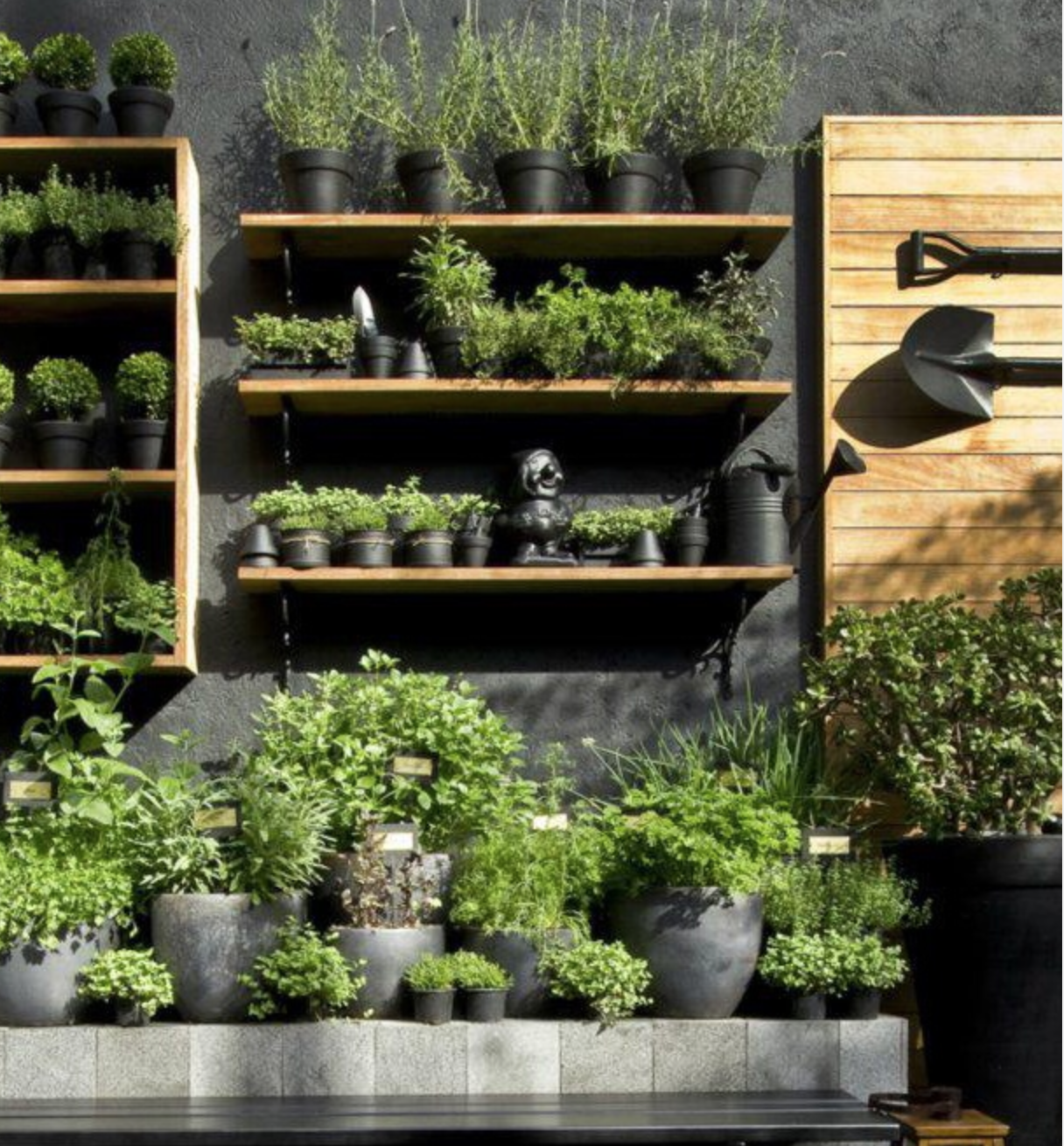 great planting