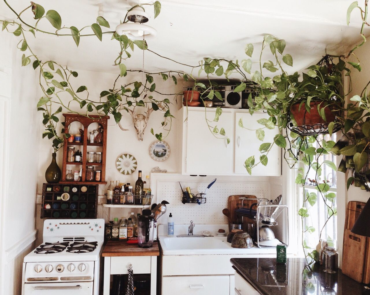 A Kitchen Is Always Better With Plants Bohemian Kitchen Decor Home Decor