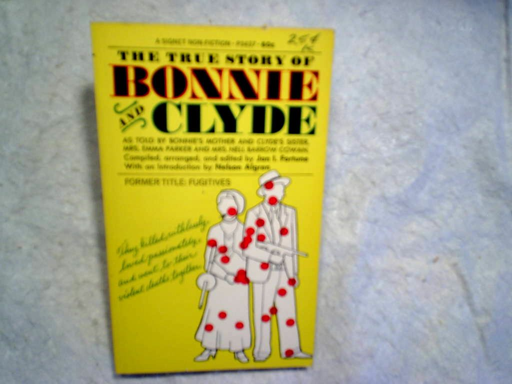 bonnie and clyde type books