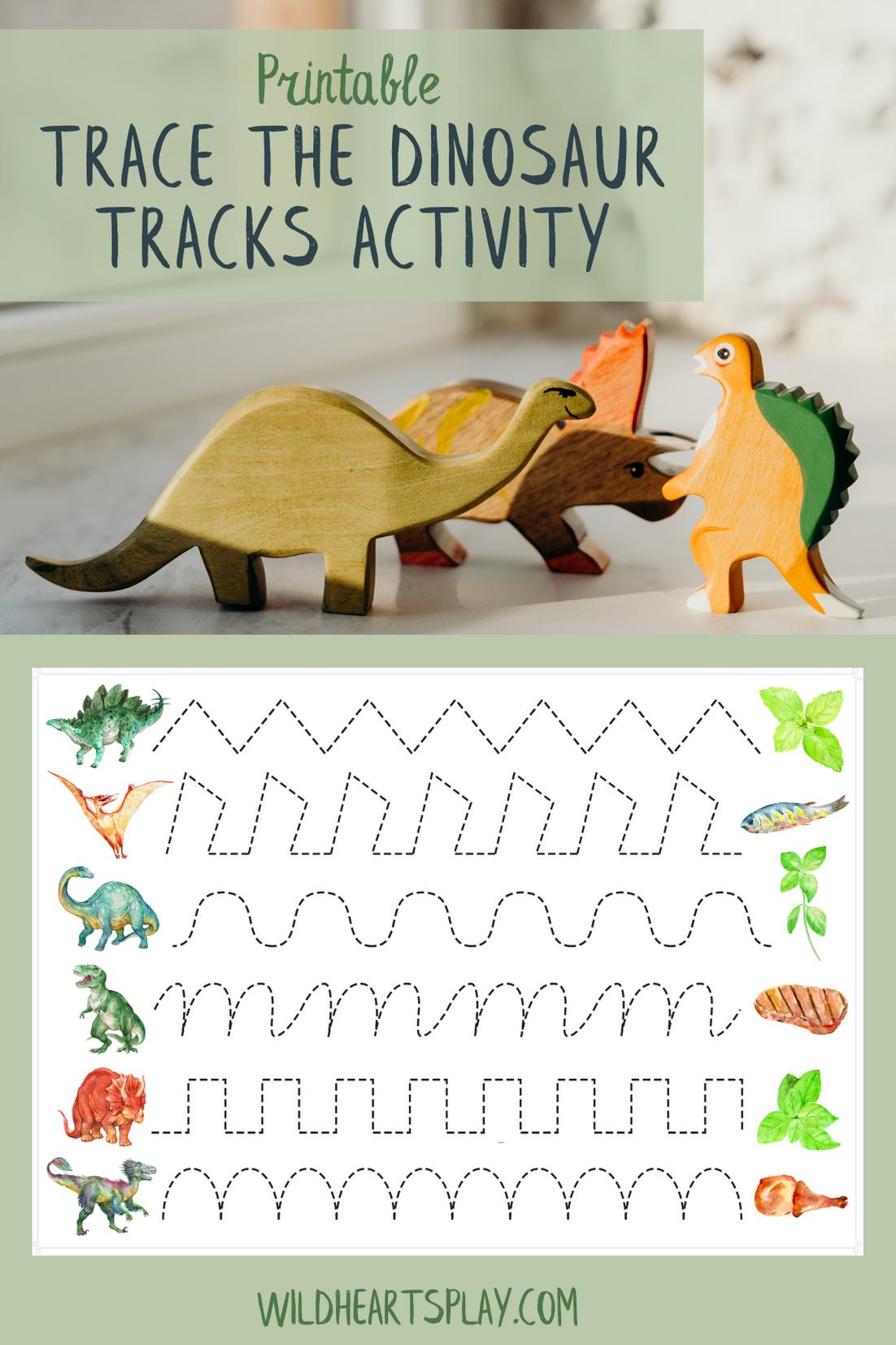 Printable Trace The Dinosaur Tracks Worksheet