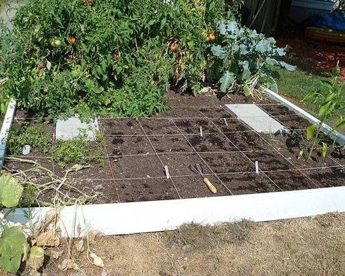 Fall vegetable garden #fallvegetablegardening | Garden | Pinterest ...
