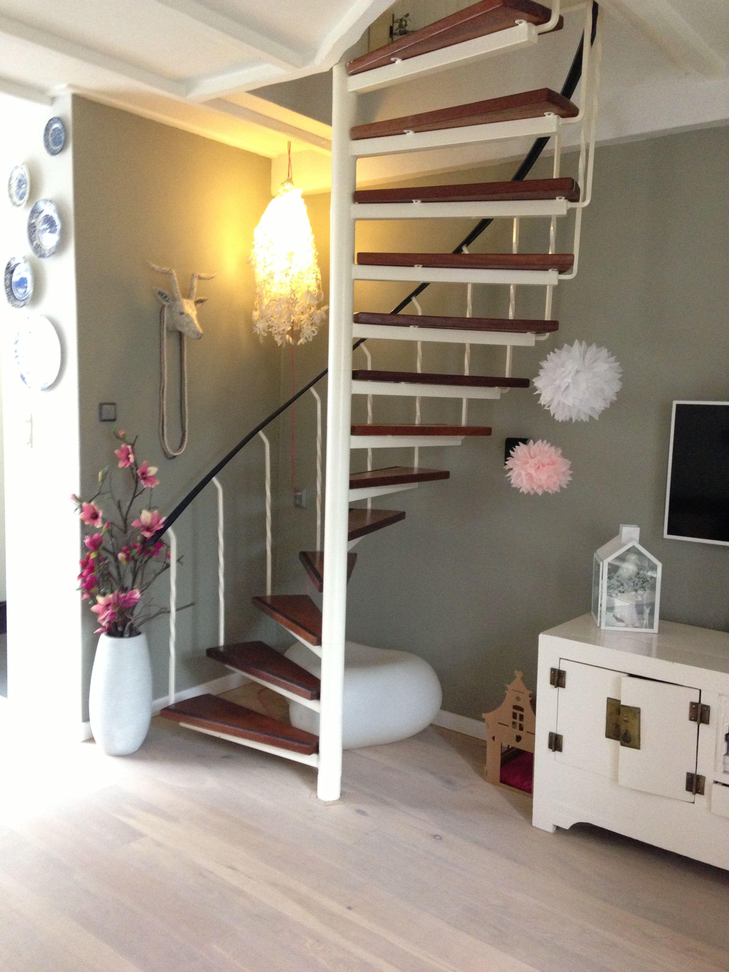 Stairs To Top Attic Winding Stairspiral Stairunderstairs Ideasattic Designattic