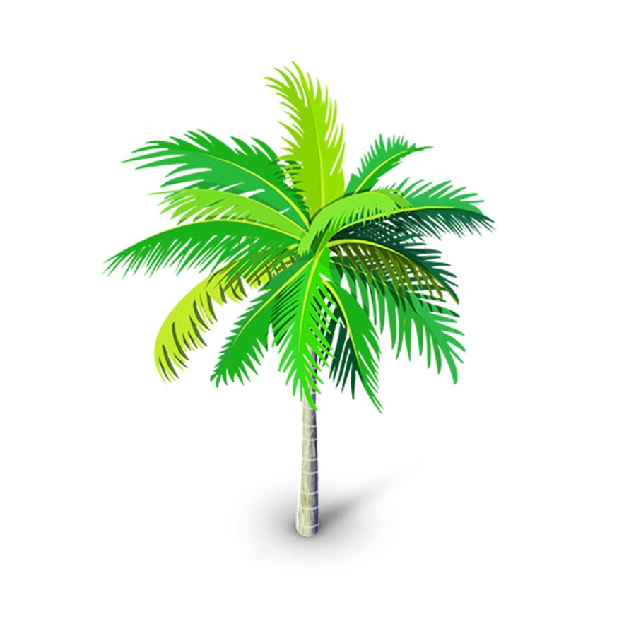 Free Download High Quality Palm Tree Vector Png Clip Art Transparent Background It Is Good Quality Vector Png Tree I Palm Tree Png Palm Tree Vector Tree Images