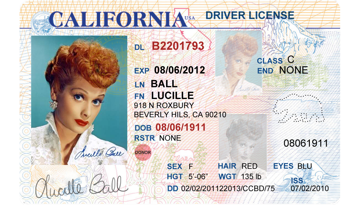 Juicenovag's Drivers License Format Diary California -