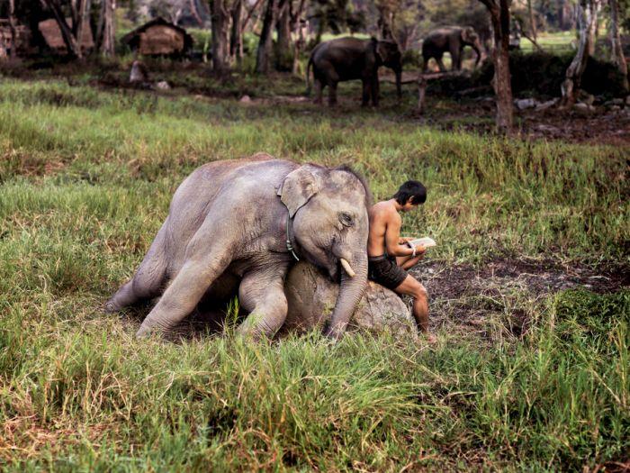 Art of Friendship – Steve McCurry's Blog