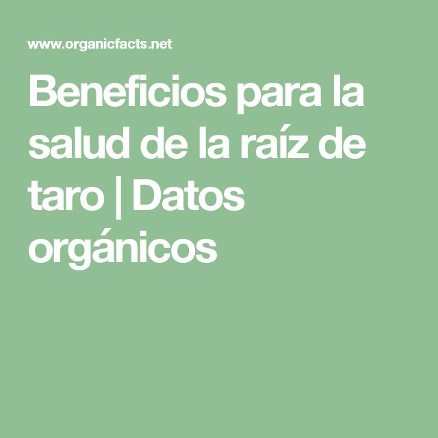 Beneficios para la salud de la raíz de taro |  Datos orgánicos