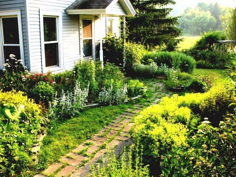 Cottage garden inspiration | Front garden design, Garden ...