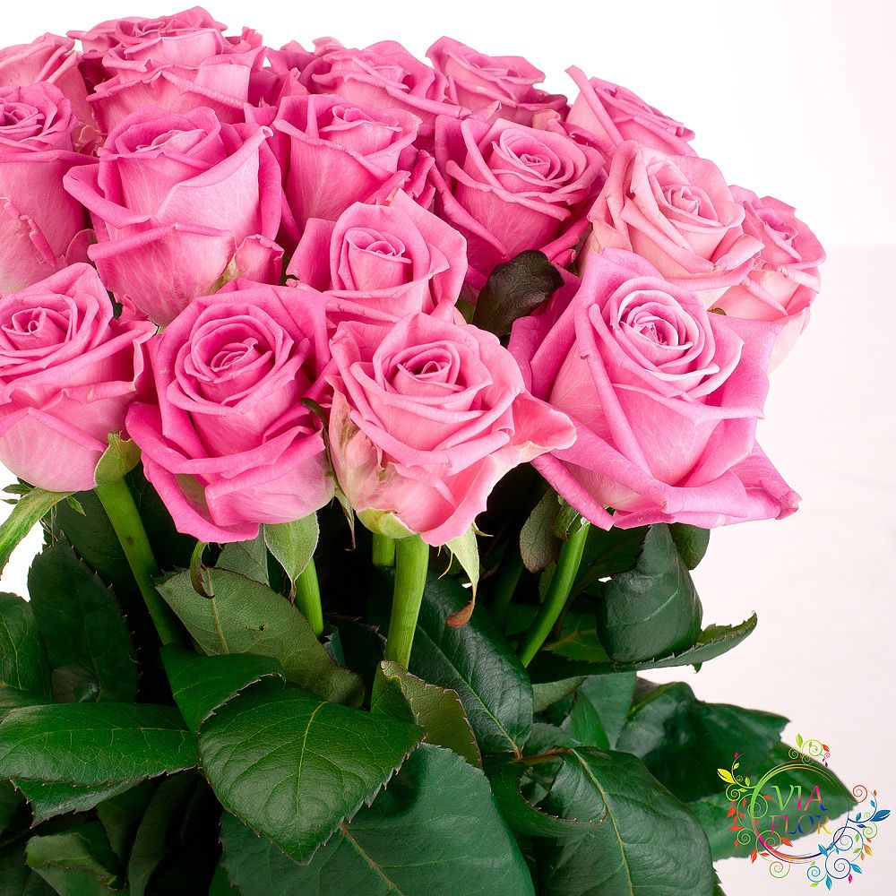 Заказ цветы доставка харьков — photo 10