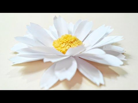 Chamomile Daisy Paper Flower Diy Tutorial Paper Flowers Easy For