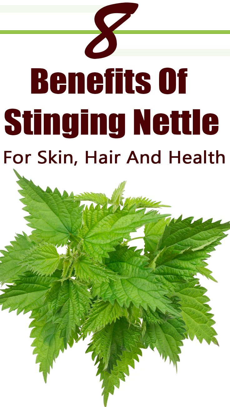 8 Amazing Benefits Of Stinging Nettle For Skin, Hair And Health