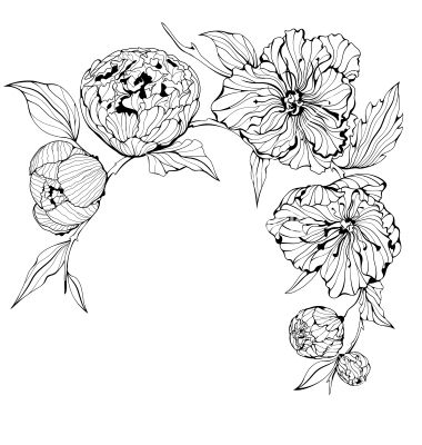 Black and white background with flowers vector by alchena on black and white background with flowers vector by alchena on vectorstock mightylinksfo