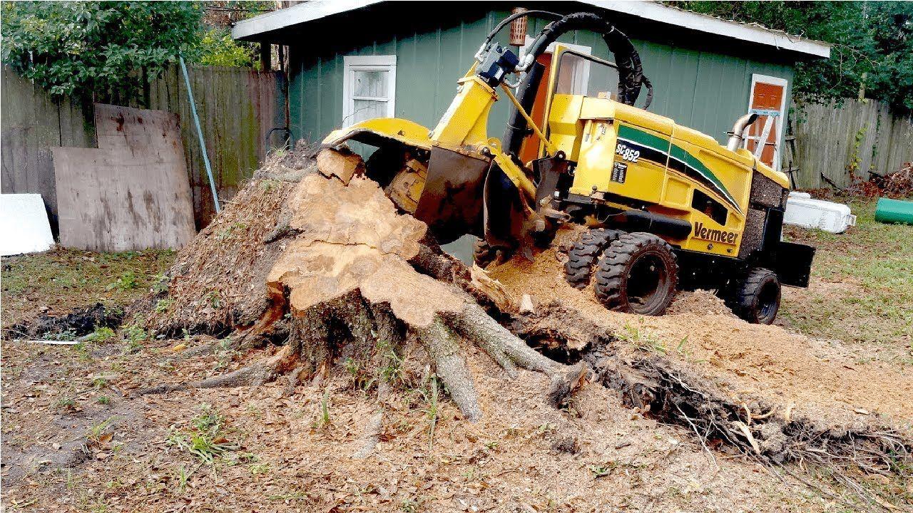 Extreme fast tree stump grinder modern technology