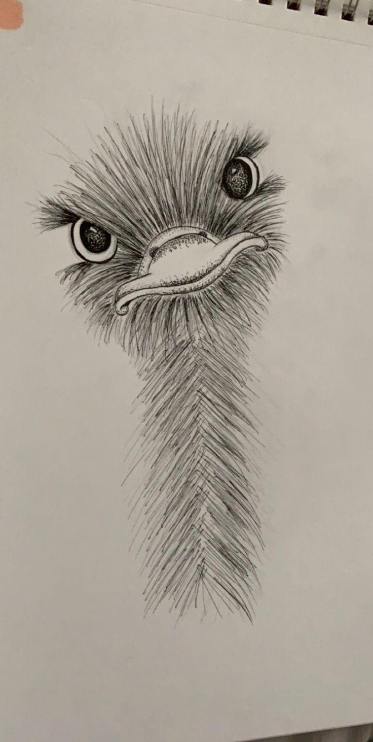 kleiner Straußenfreund :) #art #animalart #drawing #sketch #drawings #art - Christmasen