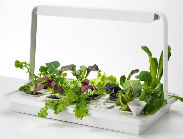 55 awesome indoor gardening and plant ideas hydroponic grow kits hydroponic grow kits the indoor gardener workwithnaturefo
